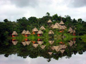 Amazonia- Ecuador South America