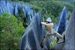 Mulu National Park Malaysia