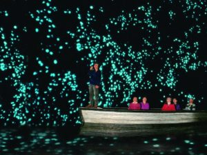 Waitomo Glowworm caves, New Zealand